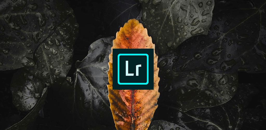 دانلود ادوبی لایت روم Adobe Lightroom 6.2.0 برنامه ویرایش تصویر اندروید